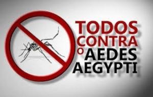 Para o combate ao mosquito Aedes aegypti conte com os serviços de Dedetização e Termonebulização da Matrix Dedetizadora. Ligue (11)5814-6401